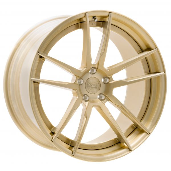 YP 1.2 Forged |Gold Digger Edition